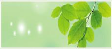 济南缔造者园林景观设计有限公司
